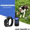 Elektrický výcvikový obojok pre psa
